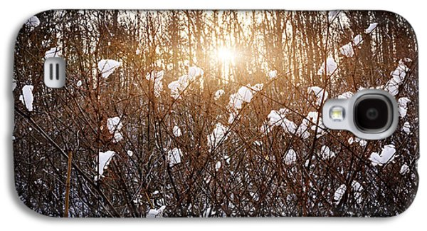 Setting Sun In Winter Forest Galaxy S4 Case by Elena Elisseeva