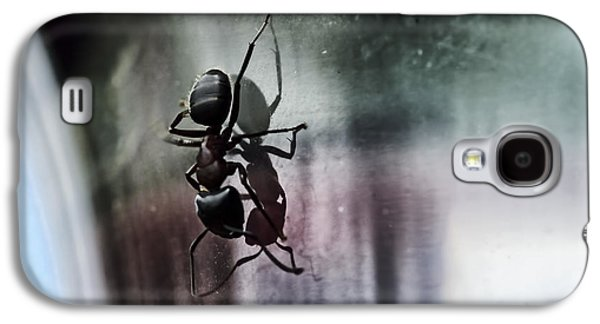 Ant Galaxy S4 Case - Shadow Dancing by Susan Capuano