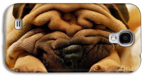 Shar Pei Puppy Galaxy S4 Case by Marvin Blaine