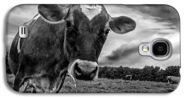 Cow Galaxy S4 Case - She Wears Her Heart For All To See by Bob Orsillo