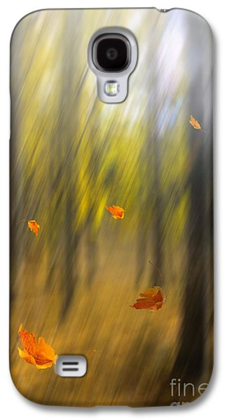 Shed Leaves Galaxy S4 Case by Veikko Suikkanen