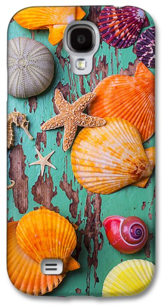 Shells On Old Green Board Galaxy S4 Case