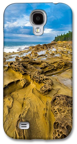 Shore Acres Sandstone Galaxy S4 Case by Robert Bynum