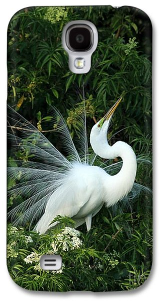 Showy Great White Egret Galaxy S4 Case by Sabrina L Ryan