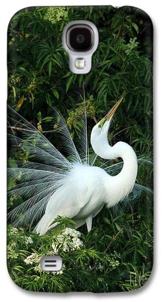 Showy Great White Egret Galaxy S4 Case