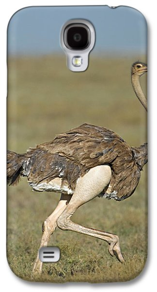 Ostrich Galaxy S4 Case - Side Profile Of An Ostrich Running by Panoramic Images