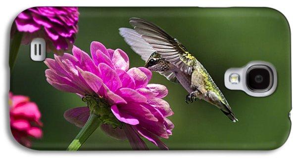 Simple Pleasure Hummingbird Delight Galaxy S4 Case by Christina Rollo