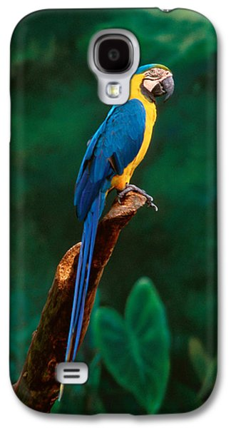 Singapore Macaw At Jurong Bird Park  Galaxy S4 Case by Anonymous