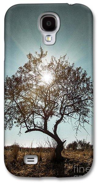 Nobody Galaxy S4 Case - Single Tree by Carlos Caetano