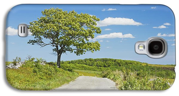 Sinlge Tree And Dirt Road  In Spring Blueberry Field Maine Galaxy S4 Case by Keith Webber Jr