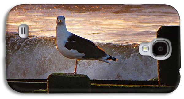 Sittin On The Dock Of The Bay Galaxy S4 Case by David Dehner