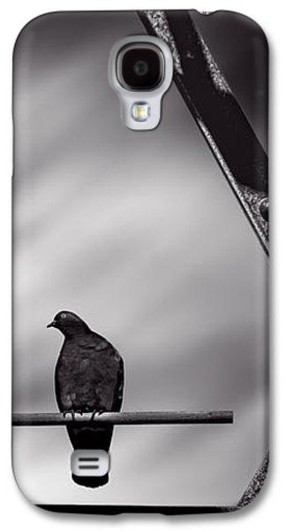Pigeon Galaxy S4 Case - Sitting On A Stick by Bob Orsillo