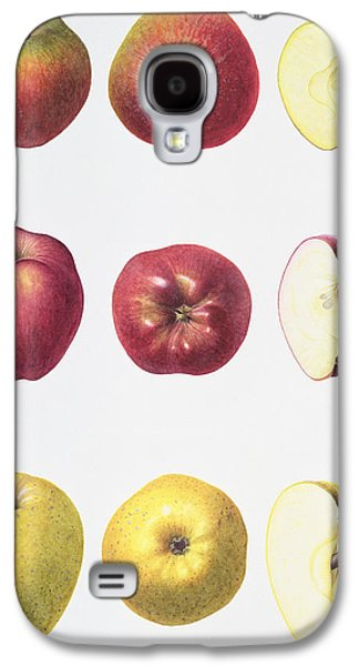 Six Apples Galaxy S4 Case by Margaret Ann Eden
