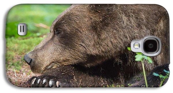 Sleeping Bear Galaxy S4 Case