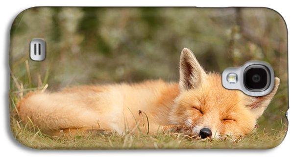 Sleeping Cuty _ Red Fox Kit Galaxy S4 Case by Roeselien Raimond
