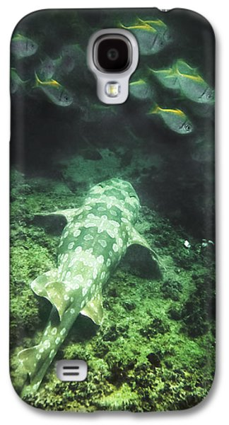 Galaxy S4 Case featuring the photograph Sleeping Wobbegong And School Of Fish by Miroslava Jurcik