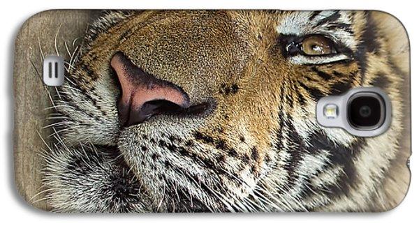 Sleepy Tiger Portrait Galaxy S4 Case by Kaye Menner