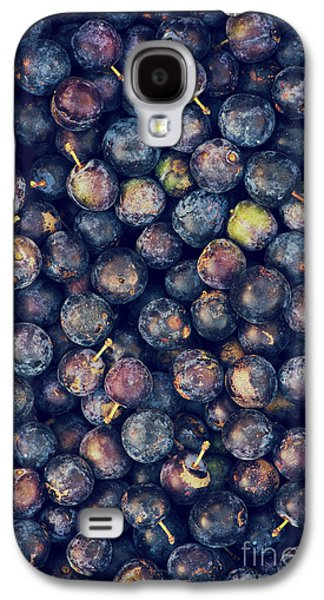 Sloes Galaxy S4 Case by Tim Gainey