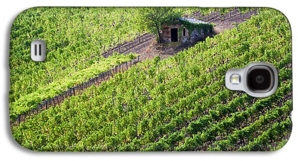 Small Rock Shed In The Vineyards Galaxy S4 Case by Terry Eggers