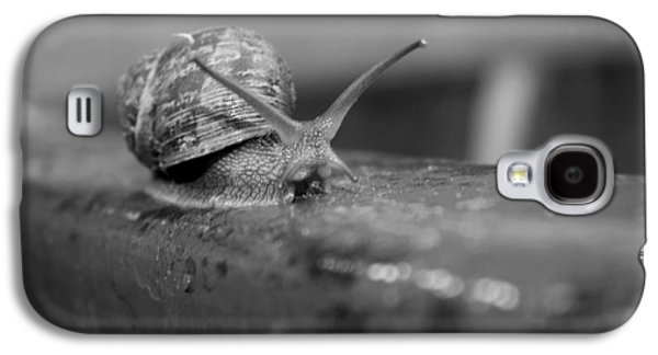 Galaxy S4 Case featuring the photograph Snail by Lora Lee Chapman