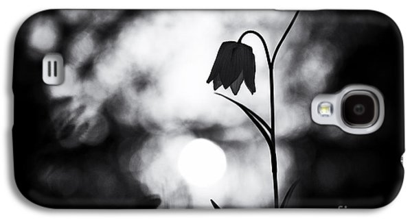 Snakes Head Fritillary Monochrome Galaxy S4 Case by Tim Gainey