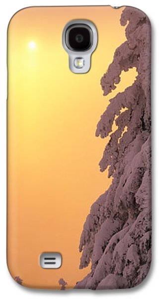 Snow Covered Tree In Winter At Sunset Galaxy S4 Case by Panoramic Images