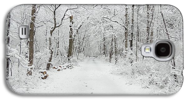Snow In The Park Galaxy S4 Case
