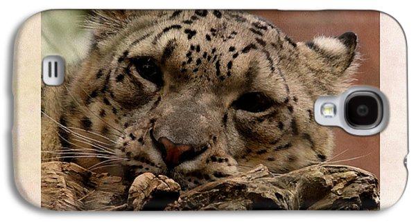 Snow Leopard 17 Galaxy S4 Case