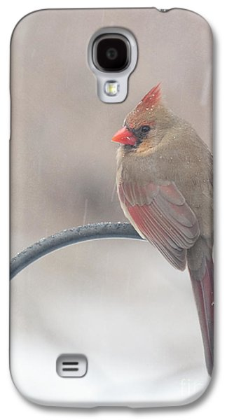 Snow Shower Galaxy S4 Case by Kay Pickens