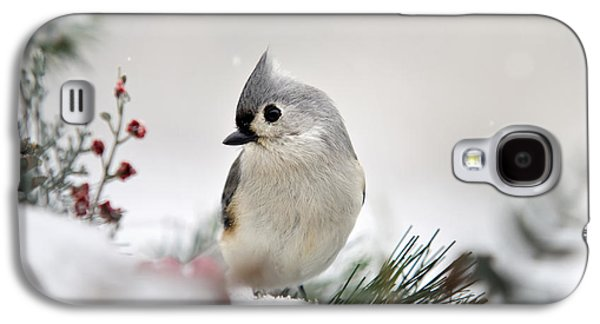 Snow White Tufted Titmouse Galaxy S4 Case by Christina Rollo