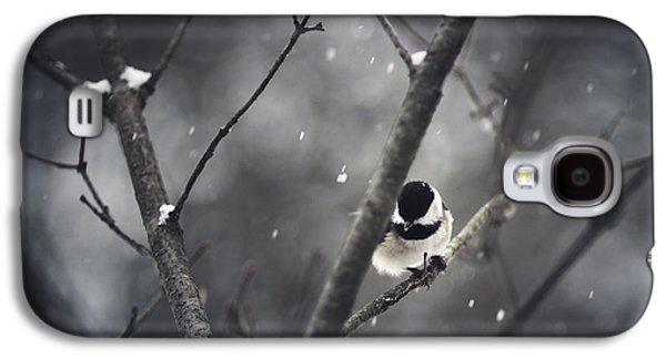 Snowy Chickadee Galaxy S4 Case