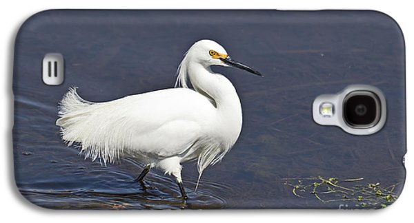 Snowy Egret Egretta Thula Galaxy S4 Case by Liz Leyden
