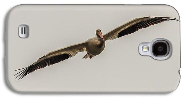 Soaring Pelican Galaxy S4 Case by Paul Freidlund