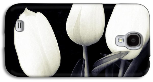Soft And Bright White Tulips Black Background Galaxy S4 Case
