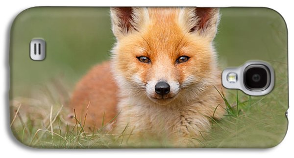 Softfox -young Fox Kit Lying In The Grass Galaxy S4 Case