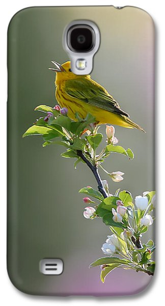 Warbler Galaxy S4 Case - Song Of Spring by Rob Blair