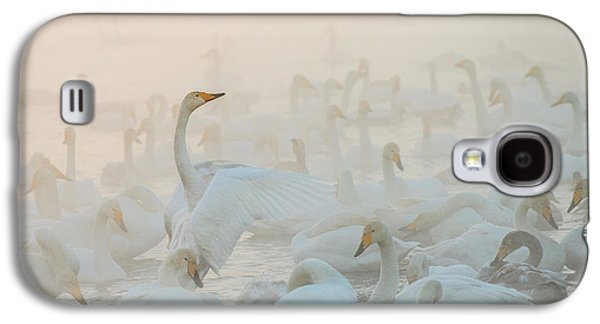 Swan Galaxy S4 Case - Song Of The Morning Light by Dmitry Dubikovskiy