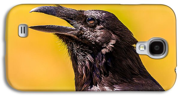 Song Of The Raven Galaxy S4 Case