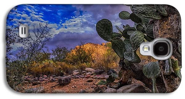 Galaxy S4 Case featuring the photograph Sonoran Desert 54 by Mark Myhaver