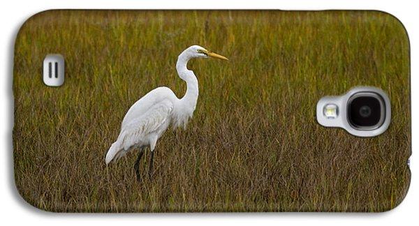 Soundside Park Topsail Island Egret Galaxy S4 Case by Betsy Knapp