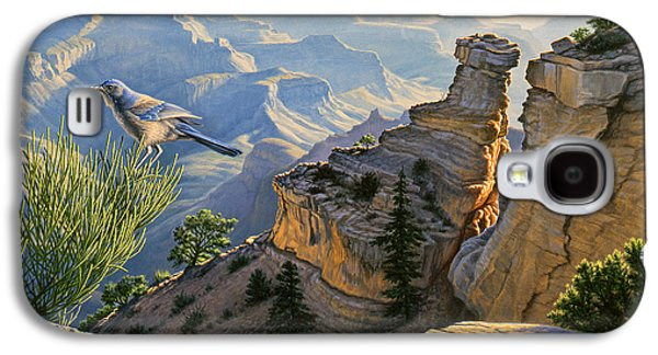 South Rim Morning Galaxy S4 Case