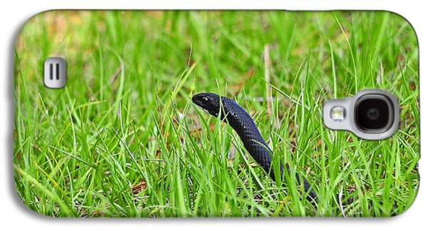 Wild Racers Galaxy S4 Case - Southern Black Racer by Al Powell Photography USA