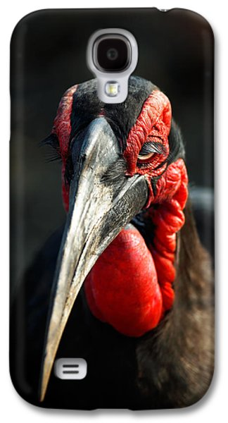 Southern Ground Hornbill Portrait Front View Galaxy S4 Case