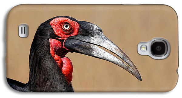 Southern Ground Hornbill Portrait Side View Galaxy S4 Case by Johan Swanepoel