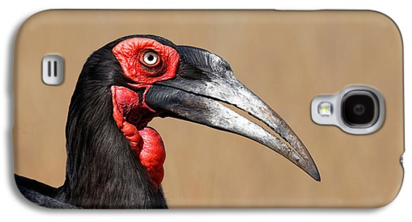 Southern Ground Hornbill Portrait Side View Galaxy S4 Case