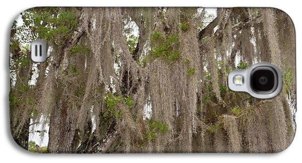 Spanish Moss Growing On Wild Tamarind Galaxy S4 Case