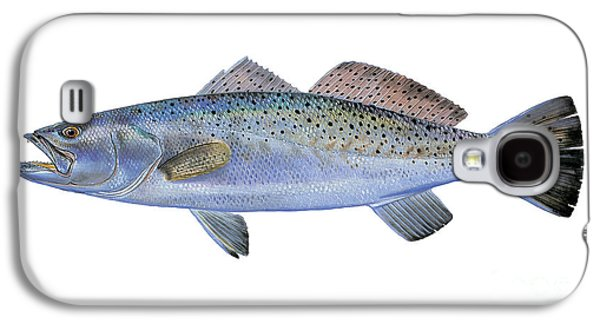 Drum Galaxy S4 Case - Speckled Trout by Carey Chen