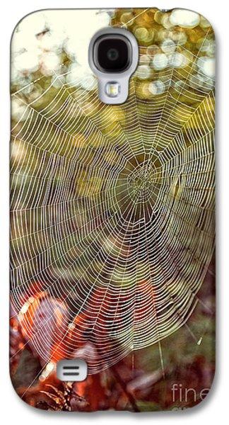 Spider Web Galaxy S4 Case by Edward Fielding