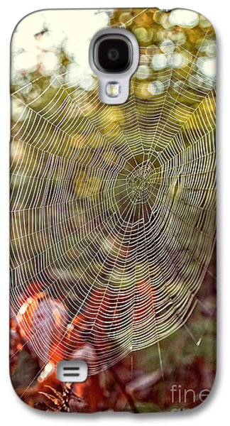 Spider Web Galaxy S4 Case