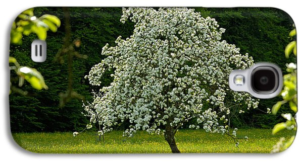 Spring - Blooming Apple Tree And Green Meadow Galaxy S4 Case